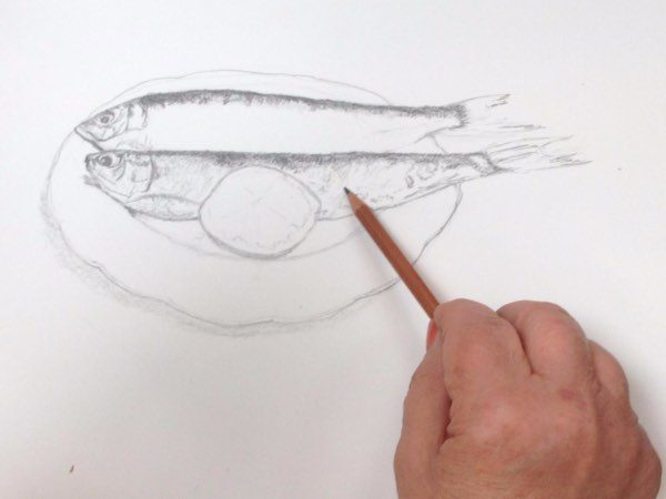 person sketching a fish with a pencil