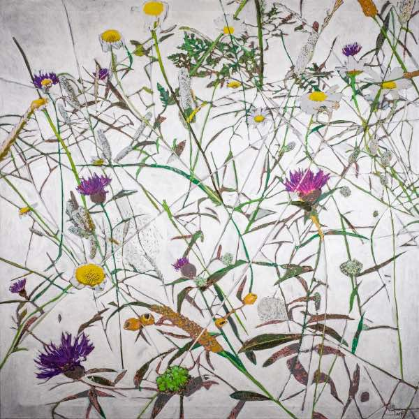 botanical print of wild flowers