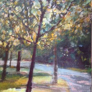 Dappled sunlight in Oaks Park – Print