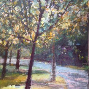 Dappled sunlight in Oaks Park – Print