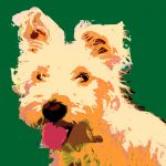 image of a dog andy warhol style
