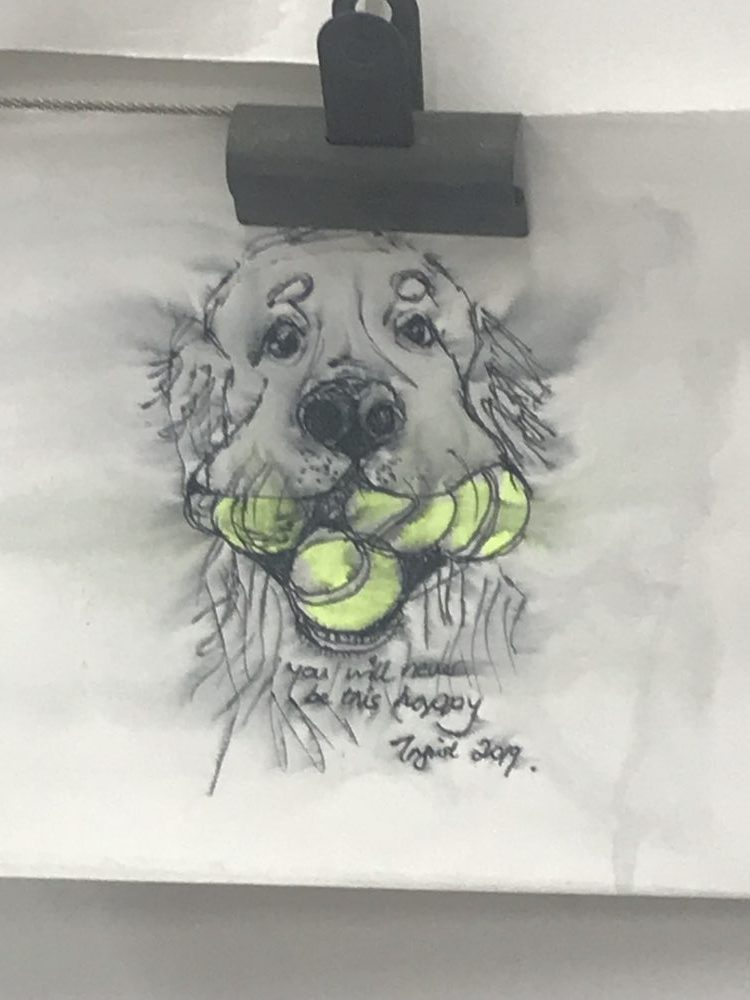 pencil drawing of a dog with tennis ball in its mouth