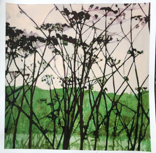 A modern botanical cow parsnip art print
