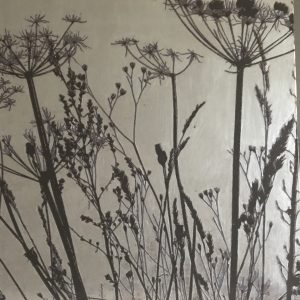 decorative silver botanical art of some seedheads 80x80cm
