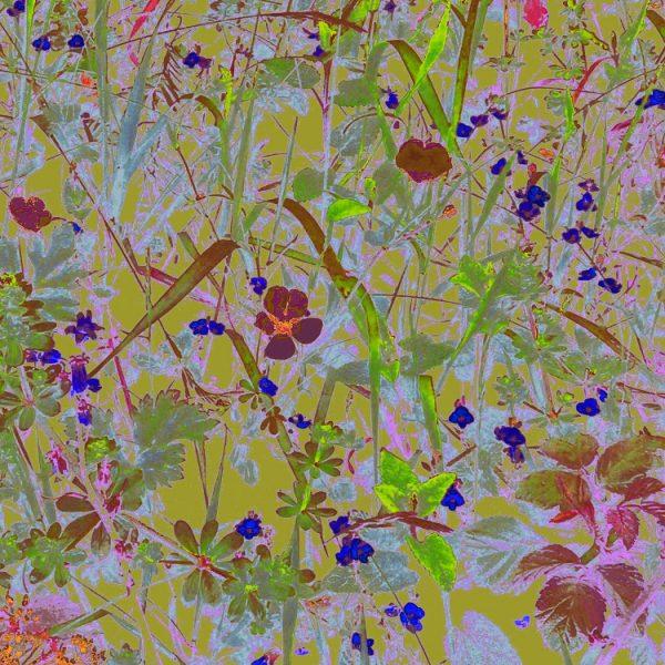 Pink botanical art print